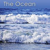 The Ocean (Relaxation Music and the Healing Sounds of the Ocean) by Dr. Harry Henshaw