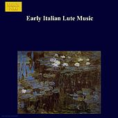 Early Italian Lute Music by Franklin Lei