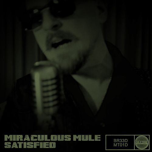 Satisfied by Miraculous Mule