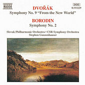 DVORAK: Symphony No. 9 / BORODIN: Symphony No. 2 by Various Artists