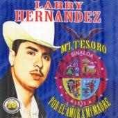 20 Exitos de Coleccion by Larry Hernández