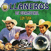 20 Exitos de Coleccion by Los Llaneros De Guamuchil
