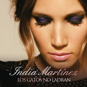 Los Gatos no Ladran by India Martinez