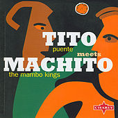 The Mambo Kings by Various Artists