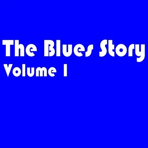 The Blues Story - Volume 1 von Various Artists