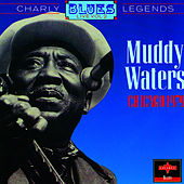 Chicago, 1979 by Muddy Waters