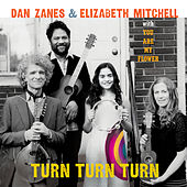 Turn Turn Turn by Dan Zanes