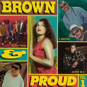 Brown & Proud by Various Artists