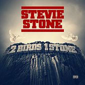 2 Birds 1 Stone (Deluxe Edition) by Stevie Stone