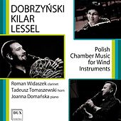Dobrzyński, Kilar & Lessel: Polish Chamber Music for Wind Instruments by Various Artists