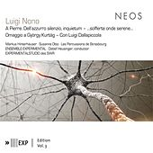 Nono: A Pierre. Dell'azzurro silenzio, inquietum2 by Various Artists