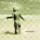 Remember by Rusted Root