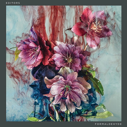 Formaldehyde by Editors