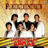 Levantando en Armas by Felinos