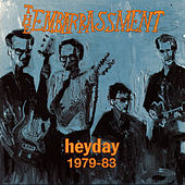 Heyday 1979-83 by The Embarrassment