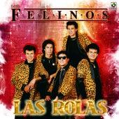 Las Rolas by Felinos