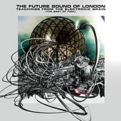 Teachings From The Electronic Brain by Future Sound of London