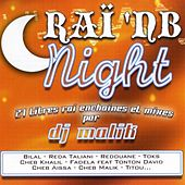 Raï 'NB Nights, 27 titres raï enchainés et mixés par Dj Malik by Various Artists