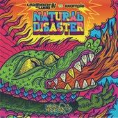 Natural Disaster by Laidback Luke
