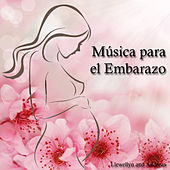 Música para el Embarazo by Various Artists