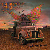 Dirty Side Down by Widespread Panic
