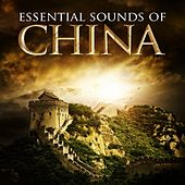 Essential Sounds of China by Various Artists