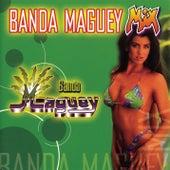 Banda Maguey Mix by Banda Maguey