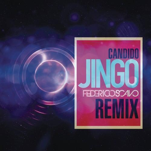 Jingo by Candido