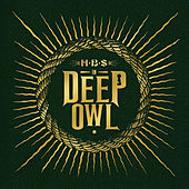 In Deep Owl by Hbs