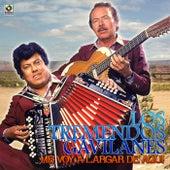 Me Voy a Largar de Aqui by Los Tremendos Gavilanes