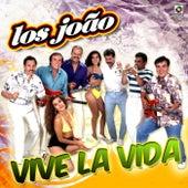 Vive la Vida by Los Joao