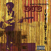 Dub Evolution by Various Artists