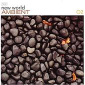 New World Ambient 02 by Various Artists