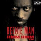 Hmm Hmm (Remix) von Beenie Man