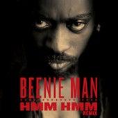 Hmm Hmm (Remix) by Beenie Man