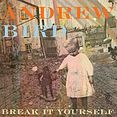 Break It Yourself von Andrew Bird