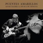 Puentes Amarillos (Aznar Celebra la Musica de Spinetta) by Pedro Aznar