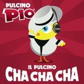 Il Pulcino Cha Cha Cha by Pulcino Pio