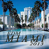 Edm Miami 2013 (The Best Electro House, Electronic Dance, EDM, Techno, House & Progressive Trance) by Various Artists
