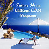 Future Ibiza Chillout Edm Program (The Best Electro House, Electronic Dance, EDM, Techno, House & Progressive Trance) by Various Artists