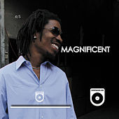 Magnificent (4 of 5) by Count Bass D
