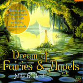 Dream Of Fairies & Angels by Mike Rowland