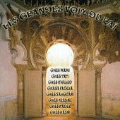 Les Grandes Voix Du Raï von Various Artists