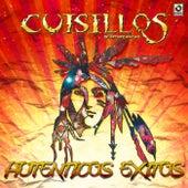 Autenticos Exitos by Banda Cuisillos