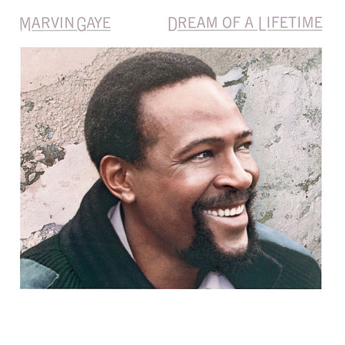 Dream Of A Lifetime by Marvin Gaye