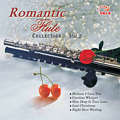 Romantic Flute Collection, Vol. 2 by Edwin