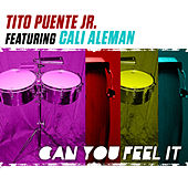 Can You Feel It by Tito Puente Jr.