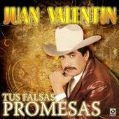 Tus Falsas Promesas by Juan Valentin