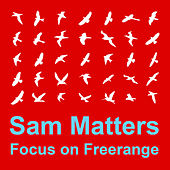Focus On : Freerange  Sam Matters by Various Artists
