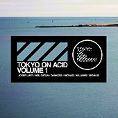 Tokyo on Acid volume 1 by Various Artists